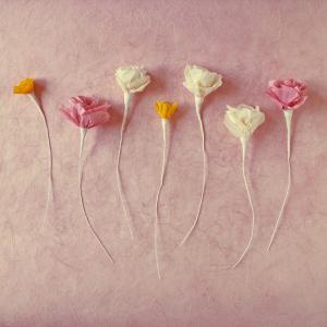 Paper Flowers By A Field Journal